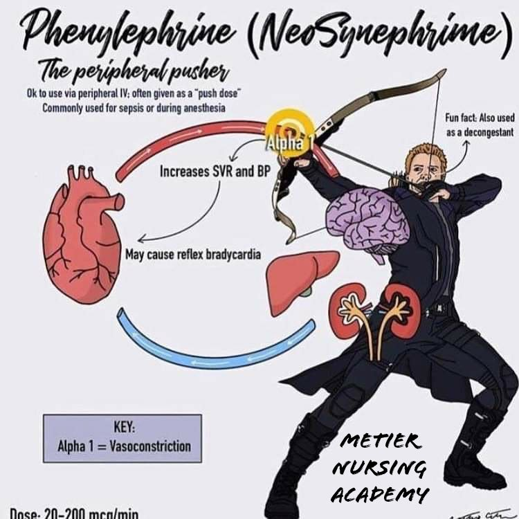 Phenylephrine super hero