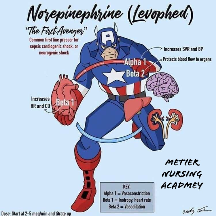 Noradrenaline super hero